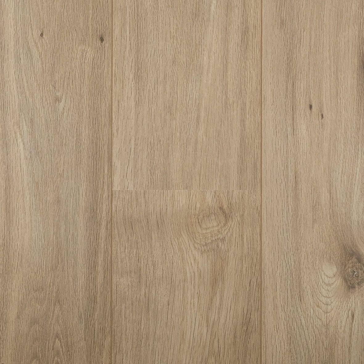 Hoomline Living Light Oak 1061